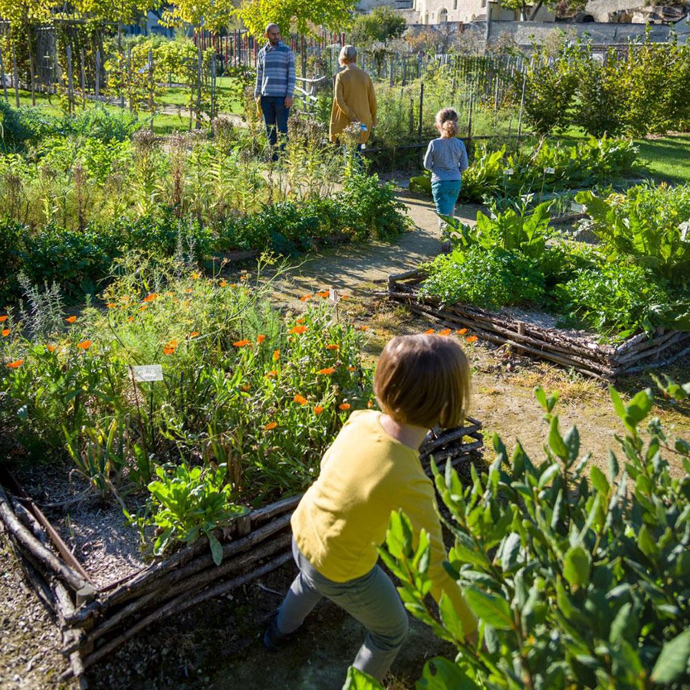 De middeleeuwse tuin